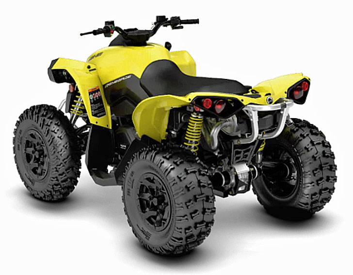 2019 can-am renegade rear