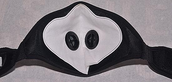 rz-mesh-mask