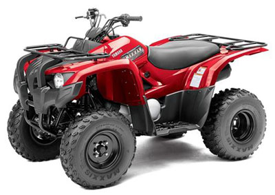 grizzly-atv-300